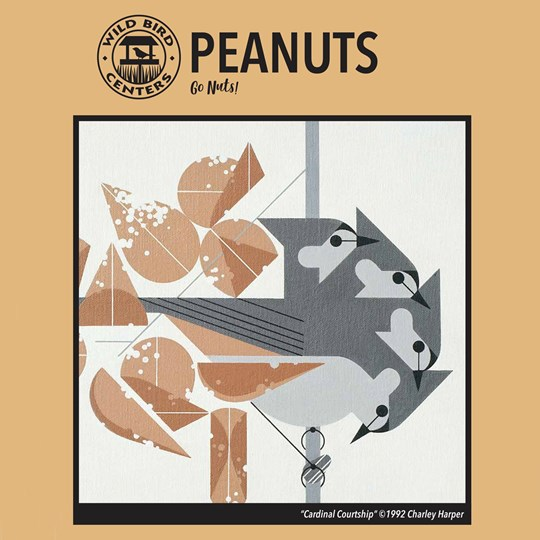Peanuts_Bag
