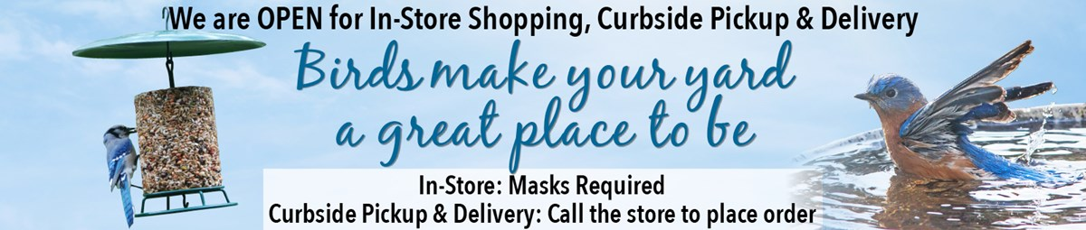 InStore,Curbside,Delivery